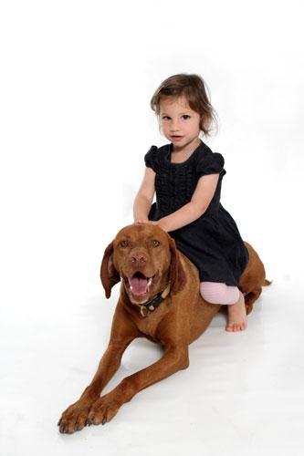 Gyerekek és kutyák